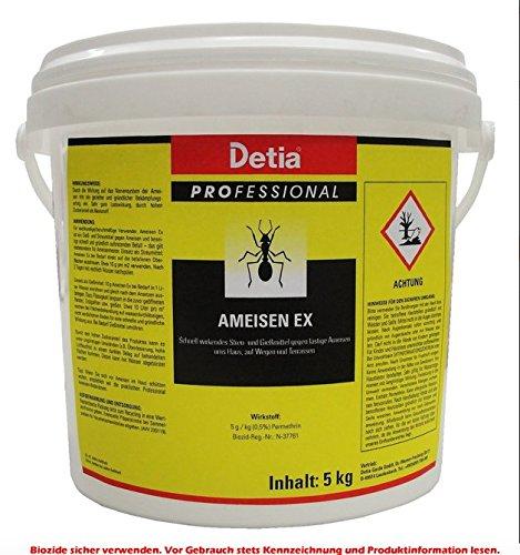Detia Ameisen Ex 5kg - Ameisen im Haus